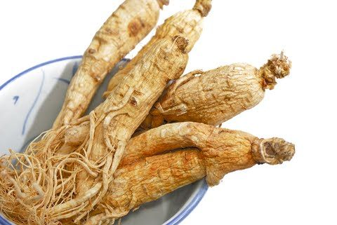 forms of ginseng and where to find them Forms Of Ginseng And Where To Find Them dreamstime 9701039 480x321